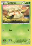 Black and White Boundaries Crossed card 14