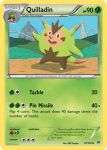 XY BREAKthrough card 10