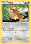 XY Flashfire card 75