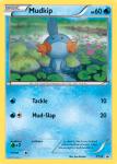 XY Promos Set card XY38