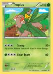 XY Roaring Skies card 12