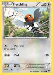 XY card 113