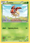 XY card 6