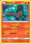 Sun and Moon Dragon Majesty card 13