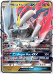 Sun and Moon Dragon Majesty card 48