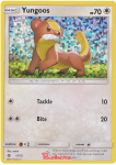 Pokemon McDonald's Collection 2017 card 12