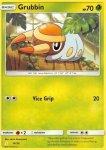 Pokemon Sun and Moon Trainer Kit Alolan Raichu deck card 16
